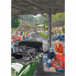Shed at Shelsley laminated poster