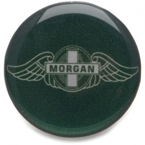 Decal Morgan - Green image #1