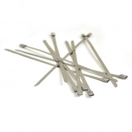 Stainless Steel Locking Ties - 200mm long (Pack of 10)