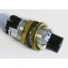 Push Starter Switch 317063