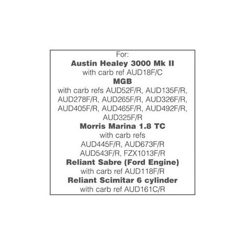 Rebuild Kit for two HS4 Carburettors image #1