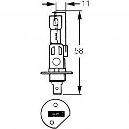H1 Halogen Bulb 12v 55w LLB448
