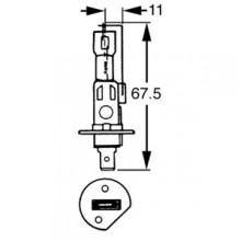 H1 Halogen Bulb 6v 55w LLB465