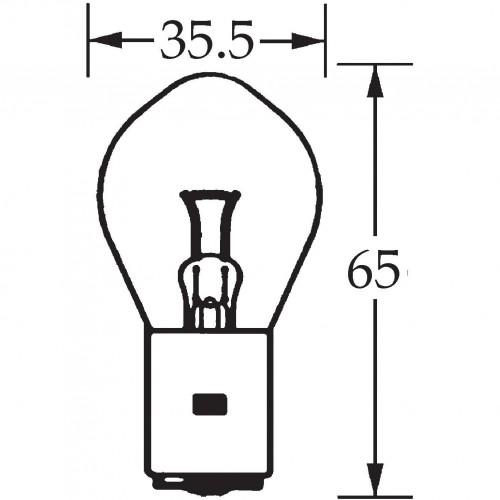 6v Bulb Double Contact Bosch/P100 45/40w LLB390 image #1